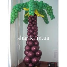 Пальма из шаров (на каркасе)
